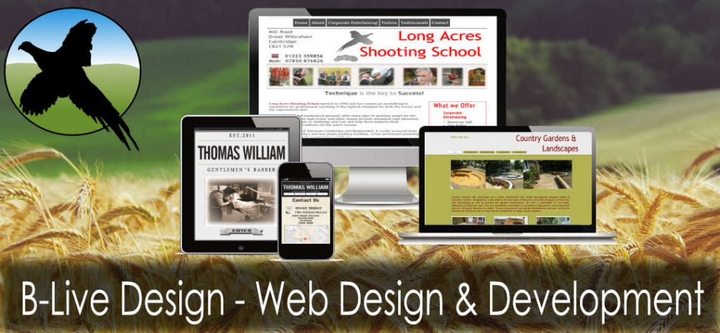 Rural Web Design and development